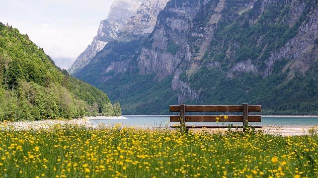 drzava-grad-planina-reka-zivotinja-i-biljka-na-slovo-z